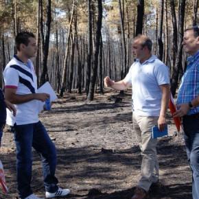 Gracias a Cs la Diputación instará a la Junta para ampliar el Plan de Empleo Forestal